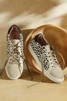 Crevo Cardi Sneakers