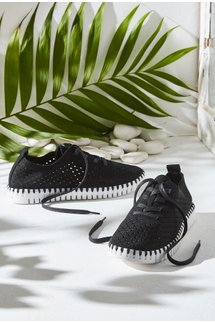 Chic Tie Sneaker
