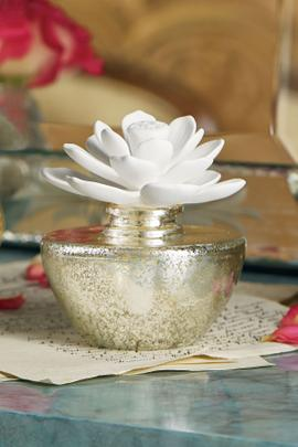 Soft Surroundings Fragrance Diffuser
