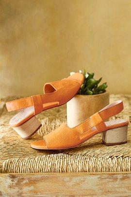 Ace Heels