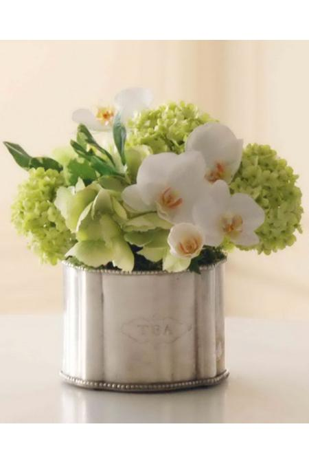Blooming Orchid & Snowball Hydrangea Arrangement