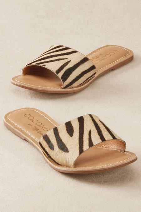 Jungle Slides