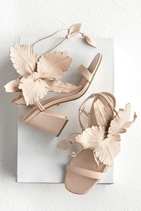 Hibiscus Heel