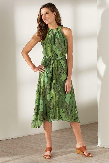 Royal Palms Dress