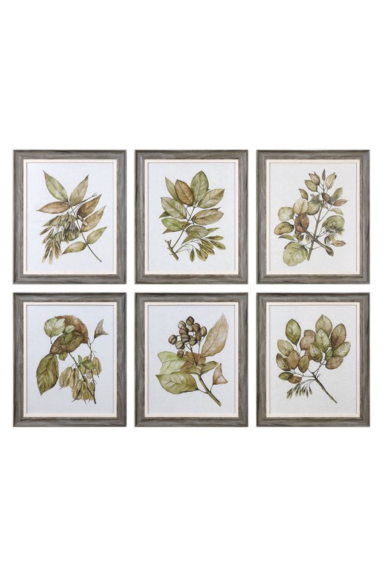 Autumn Leaves Framed Art, Set Of 6 - Wall Art | Soft Surroundings